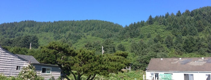 Siuslaw National Forest is one of PNW to-do.