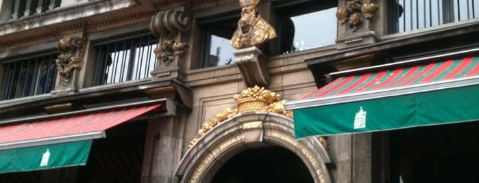 Nederlands in Brussel