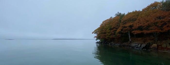 Mackworth Island Trail is one of Posti che sono piaciuti a Dana.
