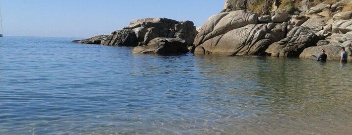Spiaggia Di Cavoli is one of Isola d'Elba.