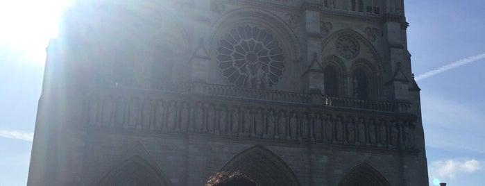 Notre Dame Katedrali is one of Mehmet Koray'ın Beğendiği Mekanlar.