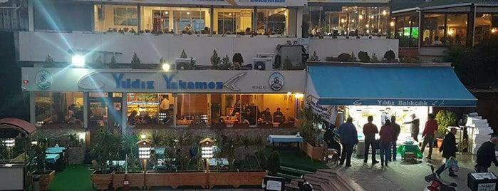Yıldız Yakamoz Balık Restaurant is one of Locais curtidos por Sinan.