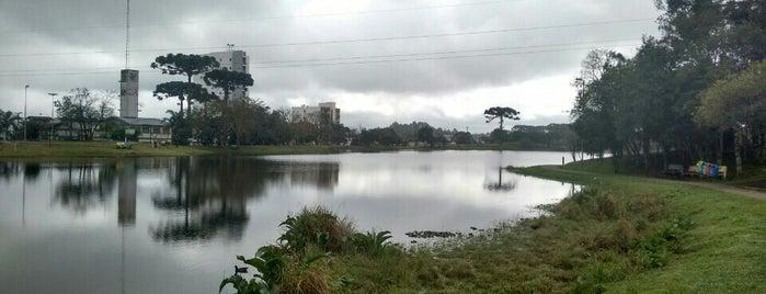 lagoa do rizzo is one of Serras Gaúchas.