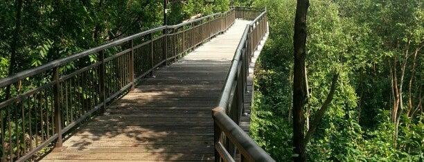 Canopy Walk is one of Christine : понравившиеся места.