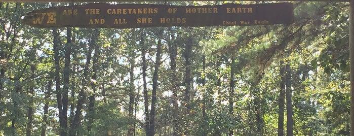 War Eagle Cavern is one of Arkansas.