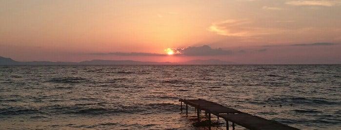 Akvaryum Sotes Resort SPA Beach Club is one of Tempat yang Disukai UFuK•ॐ.