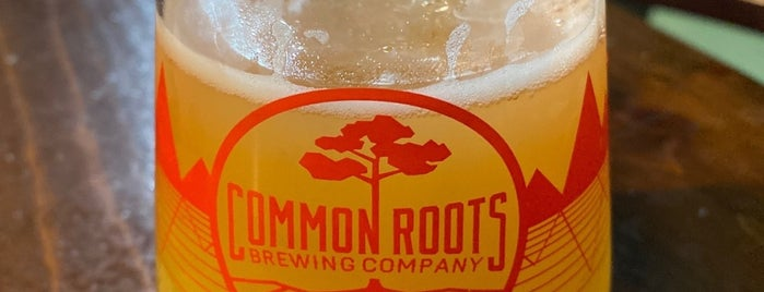 Common Roots Brewing Company is one of Breweries To Do.