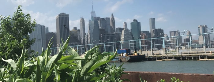 Swale Floating Garden is one of NYC eats.