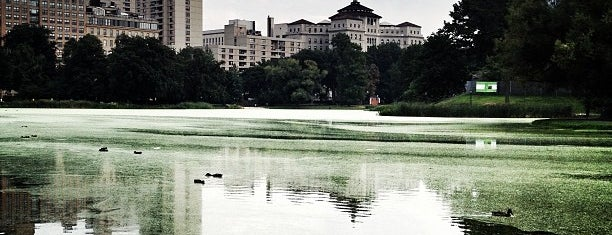 Harlem Meer is one of NEW YORK CITY : Manhattan in 10 days! #NYC enjoy.