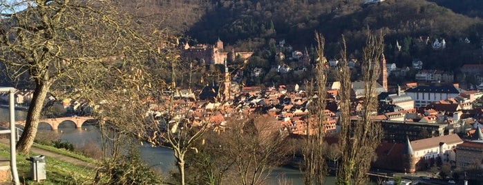 Philosophenweg is one of Heidelberg!.