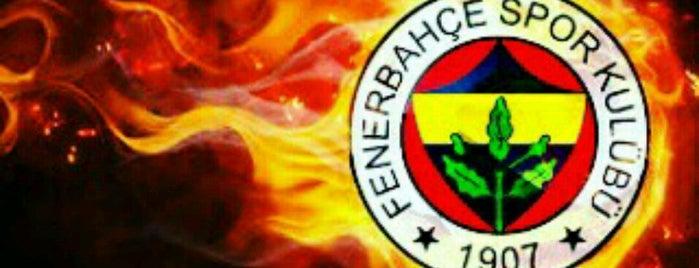Safranbolu is one of Gezi.