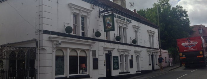 The Mucky Duck is one of Winchester Pubs.