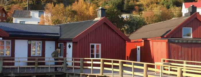 Kræmmervika Rorbuer & Lofoten Vandrerhjem Ballstad is one of Fennoskandiatour.