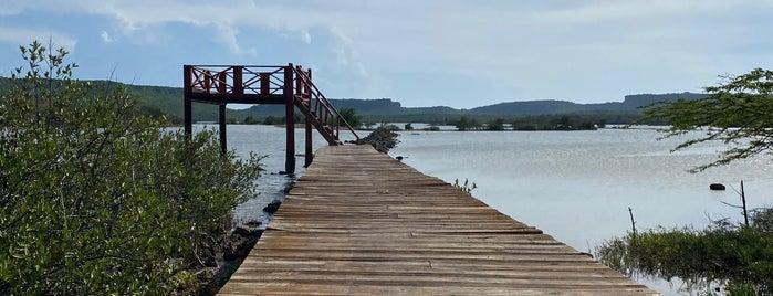 Jan Kok Flamingo Trail is one of Curaçao Trip.
