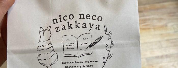 Nico Neca Zakkaya is one of New York City.