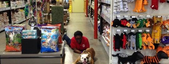 Centinela Feed & Pet Supply is one of Orte, die Lauren gefallen.