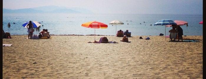 Sunset Beach Club is one of Locais curtidos por Ali.