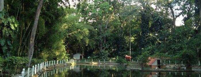 El Jardín Botánico Eloy Valenzuela is one of Búcaros.