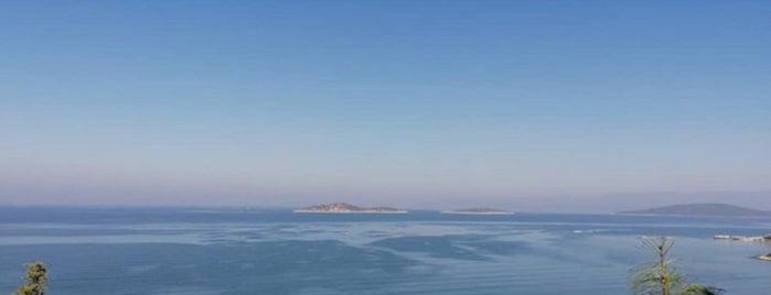 Blue Dreams Resort & Spa is one of Posti salvati di Irem.