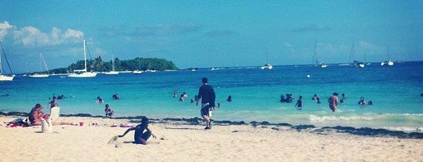 Plage de la Datcha is one of Martinique & Guadeloupe.