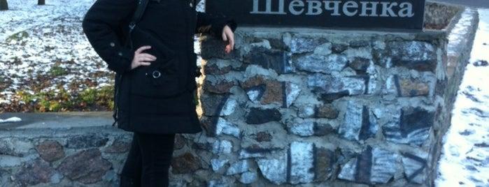 Парк ім.Тараса Шевченка is one of Illia : понравившиеся места.