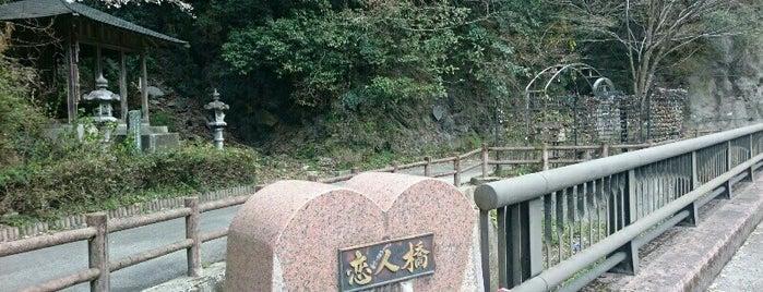 恋人峠 is one of 四国の酷道・険道・死道・淋道・窮道.