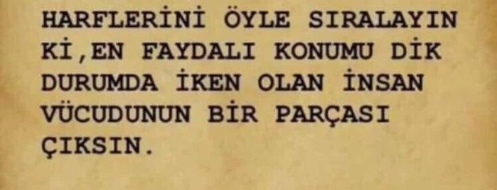 Acının Ustası is one of Ankara Favori Mekanlarım.