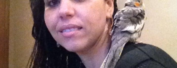 Donna Anitinha is one of Lugares bons para tortas.