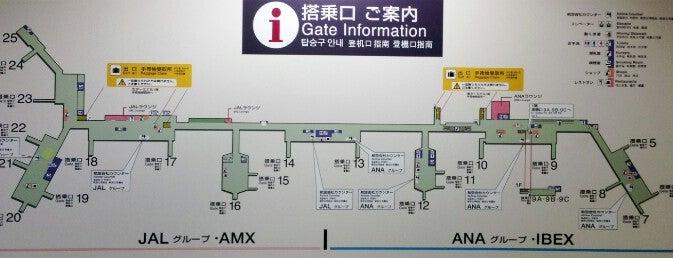 大阪国際空港(伊丹空港) 搭乗口 ITM gate