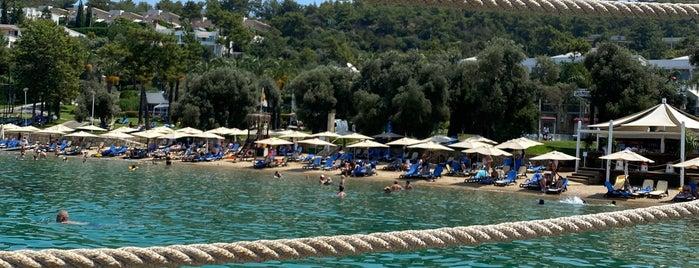 Sea & See Bar Rixos Hotel is one of Fatih : понравившиеся места.