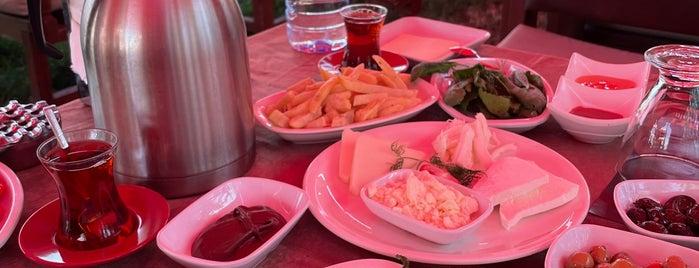Bülbül Dalları Kahvaltı is one of Akşam Yemek.