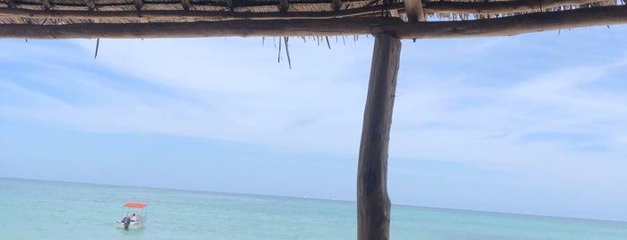 Gabi Beach is one of ZNZBR.
