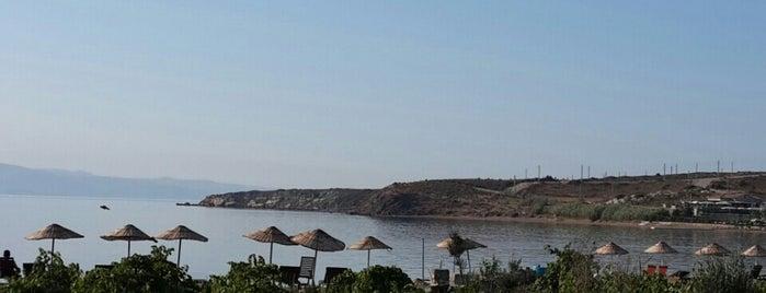 Tekirbahçe is one of Bozcaada'da nerelerde yüzülür?.