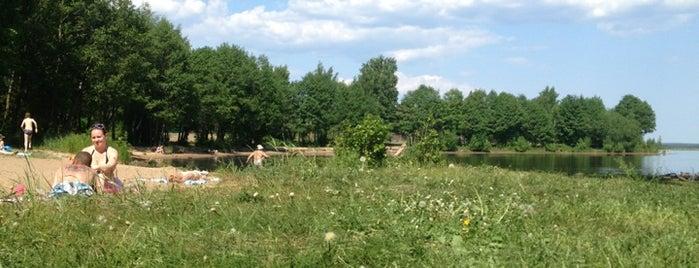Пляж «Сестрорецкий пленер» is one of Lieux sauvegardés par Olga.