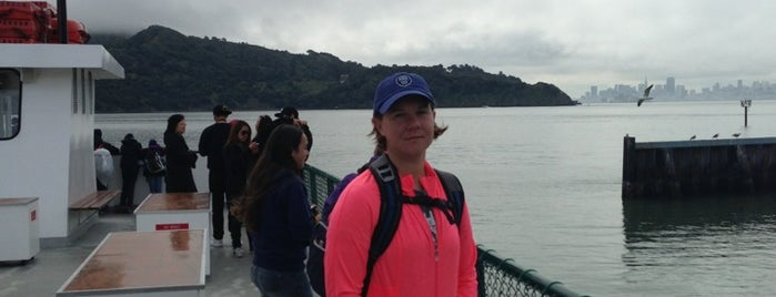 Angel Island Tiburon Ferry is one of Marin County's Best.