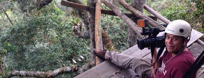 Ecoparque Macadamia Bosque Aventura is one of สถานที่ที่ Diego ถูกใจ.