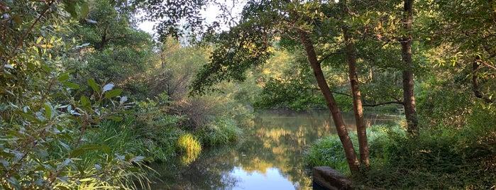 Jewel Lake is one of Kouros'un Kaydettiği Mekanlar.