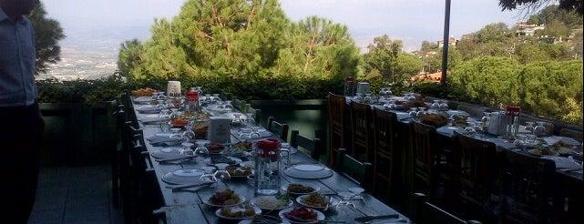 Kaplan Dağ Restaurant is one of Git baby.