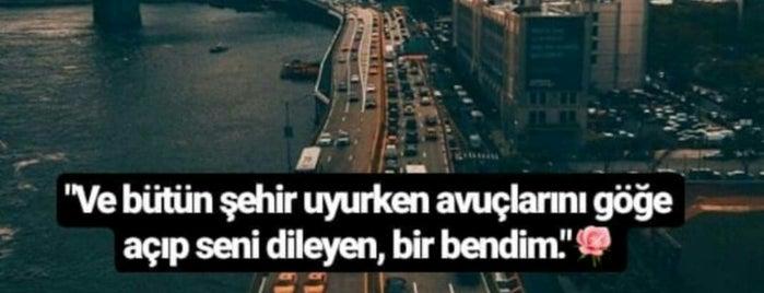 Hakiki Kasap Köftecisi is one of Şahin Görün'un Beğendiği Mekanlar.