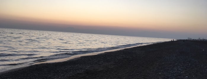 Alva Donna Beach is one of Serko 님이 좋아한 장소.