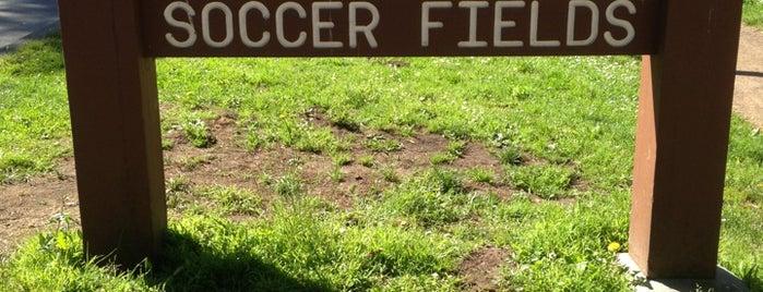 Beach Chalet Soccer Fields is one of Locais curtidos por James.