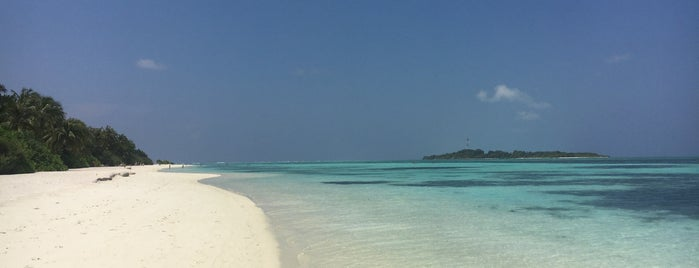 Cocoon Maldives is one of Lugares favoritos de Nuno.