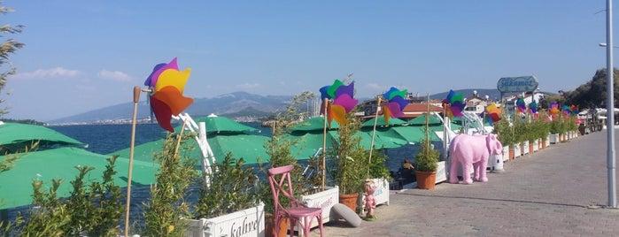 Denizaltı Cafe & Restaurant is one of Lugares guardados de Sibel.