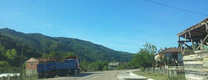 Eldeş Köyü is one of Ulus İlçesi Köyleri.