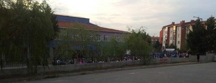 Fethi Gemuhluoğlu İlköğretim Okulu is one of Pendik.