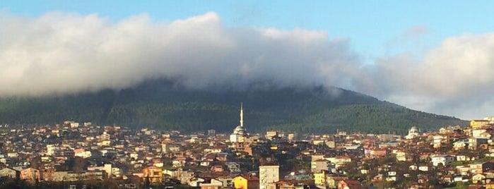Şahin Tepesi is one of M 1.