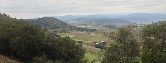 Dalle Valle Vineyards is one of Wineries & Vineyards.