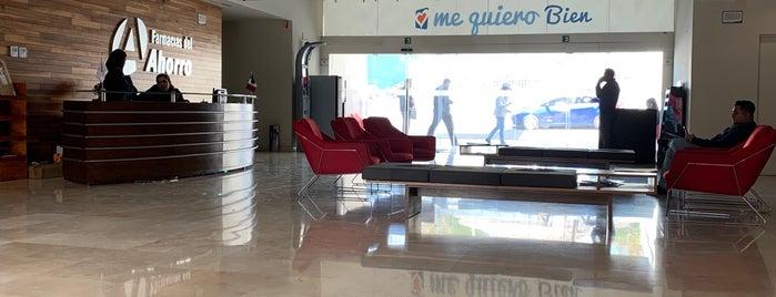 Farmacias del Ahorro (Corporativo) is one of Lugares favoritos de Roberta.