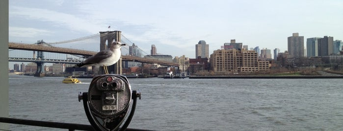 Brooklyn Bridge Park - Pier 1 is one of City Guide: New York, New York.