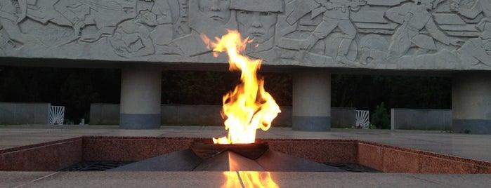 Вечный огонь is one of สถานที่ที่ Георгий ถูกใจ.